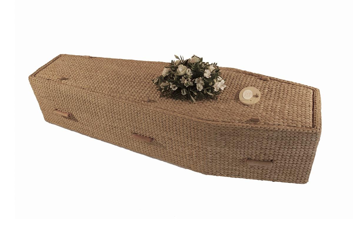 Water Hyacinth - Coffin